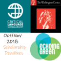 Oct/Nov Deadlines: Echoing Green, The Washington Center, Critical Language Scholarship